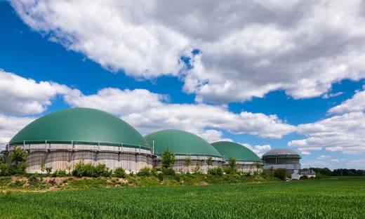 Zielone Strony Biznesu. Jak przeskoczyć w przyszłość