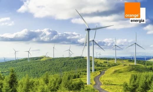 Firmę należy prowadzić z energią