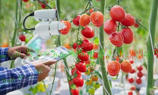 Robot, który zasieje rośliny czy system, który wykryje chorobę. Oto polskie technologie przyszłości