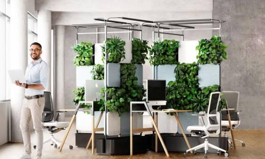 Meble biurowe z żywą roślinnością to przyszłość? Milion złotych dla 4Nature System