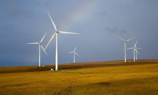 U progu zielonej rewolucji. Perspektywy sektora OZE w Polsce na tle globalnych trendów