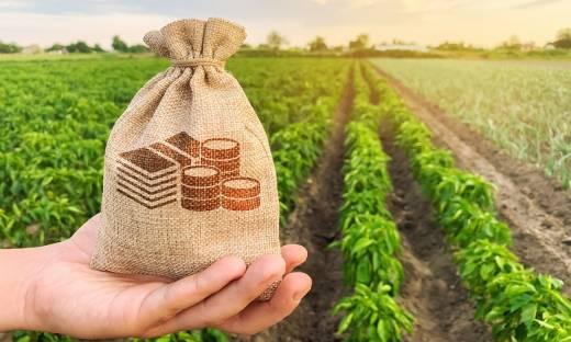 100 mln zł dla rozwoju rolnictwa 4.0. Nowy konkurs NCBR