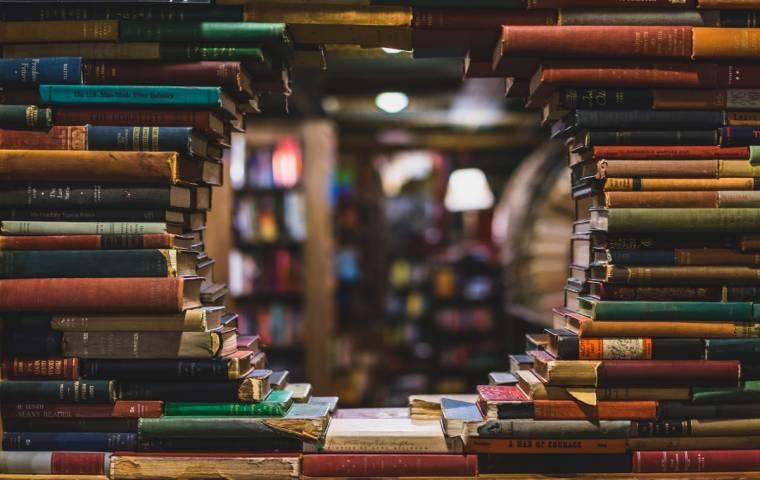 Zostań mistrzem opowieści - książki polecane przedsiębiorcom