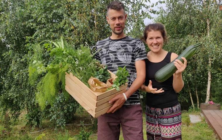Cyfrowe uprawy, realne warzywa. Polak stworzył aplikację do zdalnej pielęgnacji ogródka